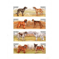 Исаков А. 2000. Азиатские охотничьи собаки. Киргизстан. Без зубцов