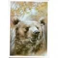 Исаков А. 1989. Медведь.