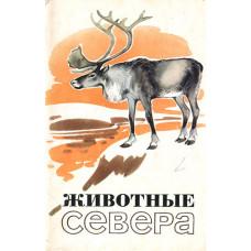 Алексеев М., Строганова Н. 1972. Животные севера